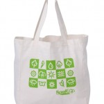 eco bag sacola retonavel sacola ecologica[1]